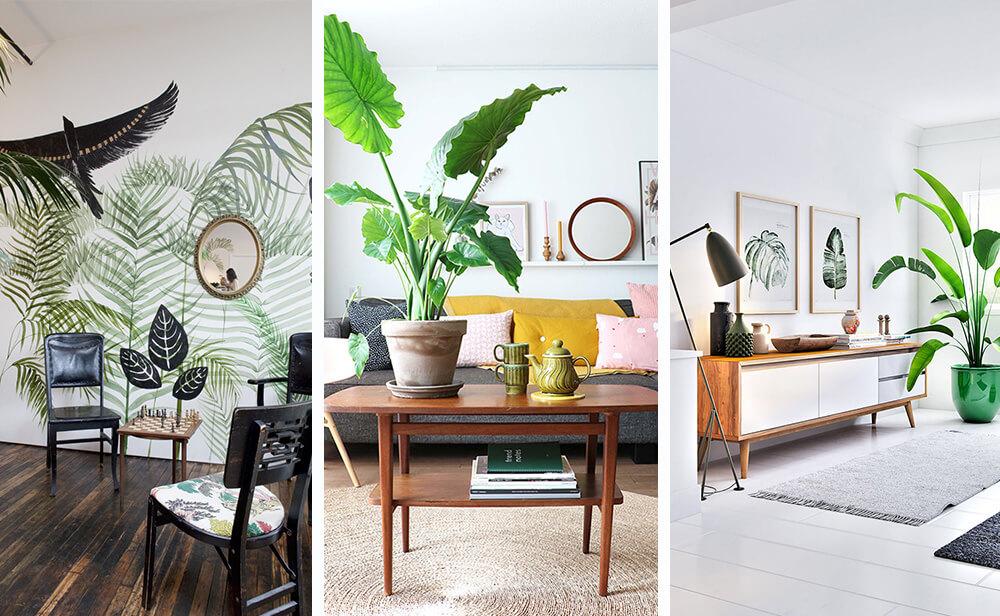 Дизайн тропического интерьера: как создать атмосферу южного курорта у себя в квартире