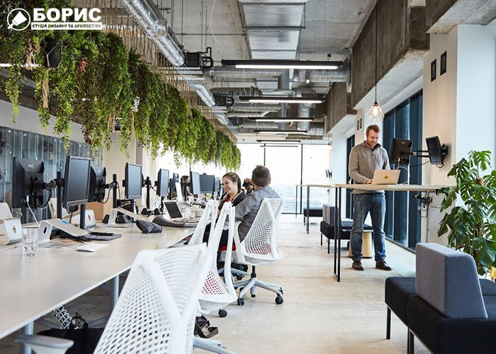 Великий офіс з сучсним дизайном і кімнатними рослинами.