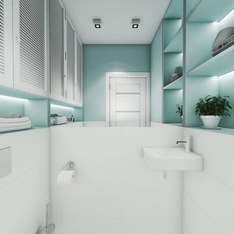 """Дизайн интерьера двухкомнатной квартиры ЖК """"Пролисок"""" ,санузел вид с правой стороны"""
